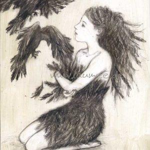 Laumee Fries - Zeichnung Federkleid